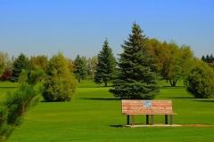 Aberdeen Golf Course
